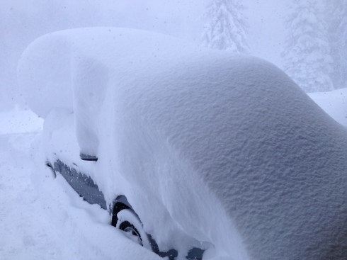 My car? Maybe? This was around 11:00AM.
